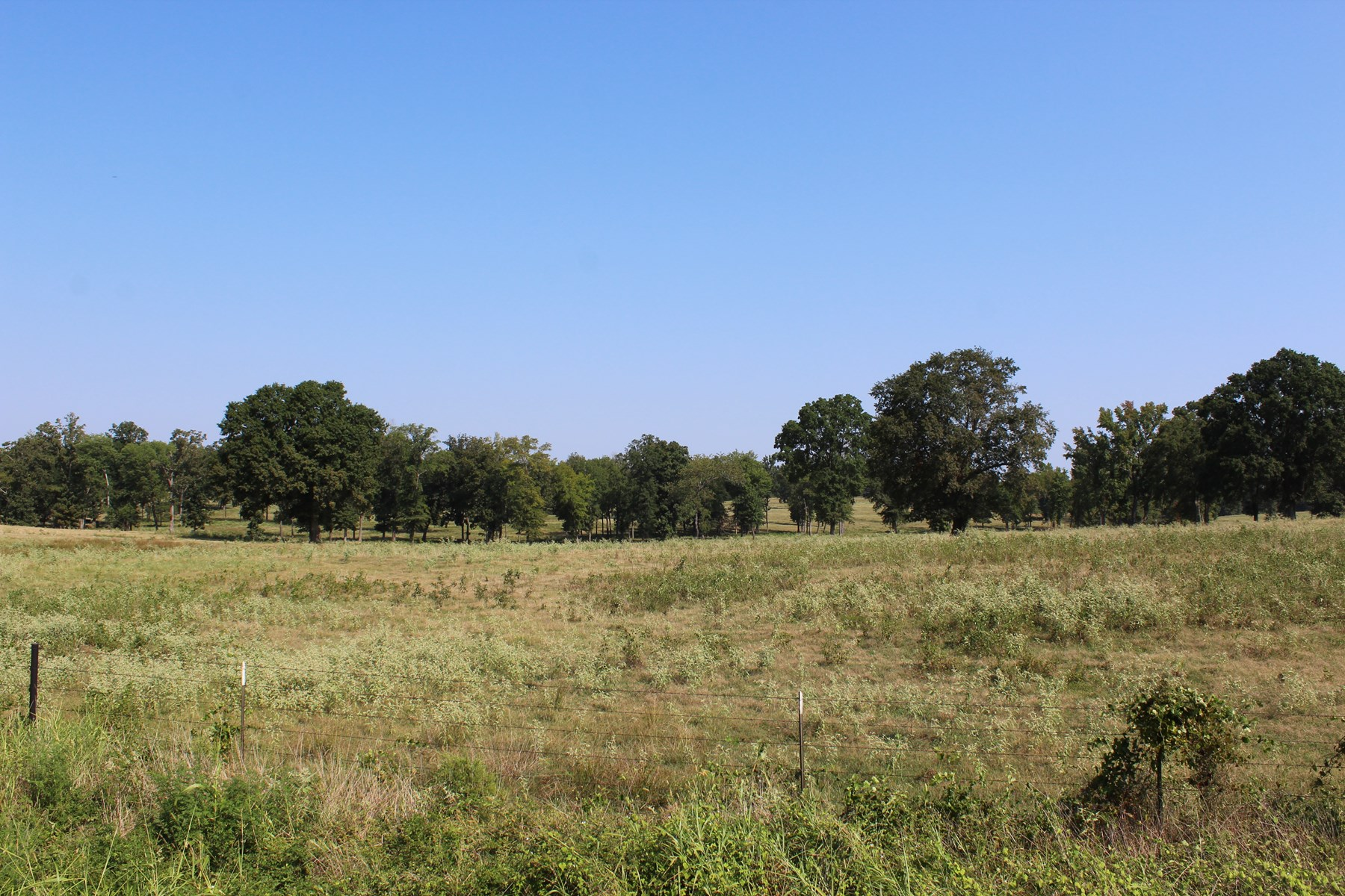 160± Acres | Cross- Fenced | Idabel, OK