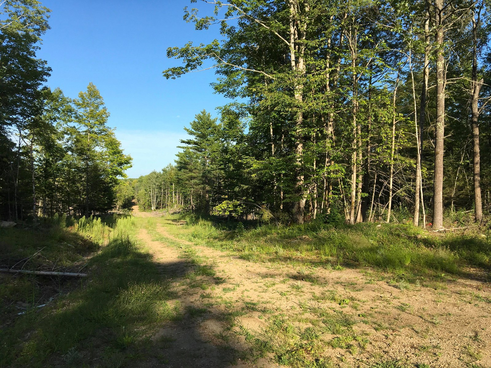 Recreational Timerland For Sale in Exeter, Maine