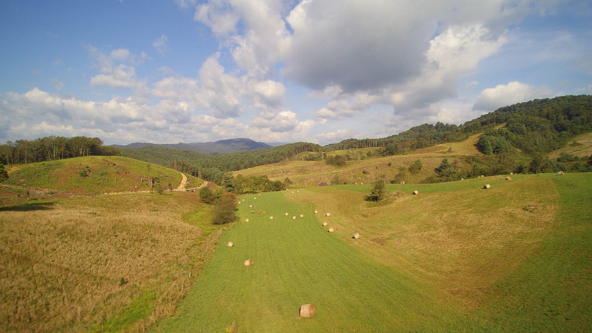 Large Acreage Tract with Views in the Blue Ridge Mountains
