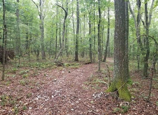 Recreational Land for Sale in Floyd County VA