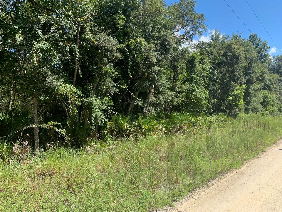 LAND FOR SALE - OLD TOWN, DIXIE COUNTY FLORIDA