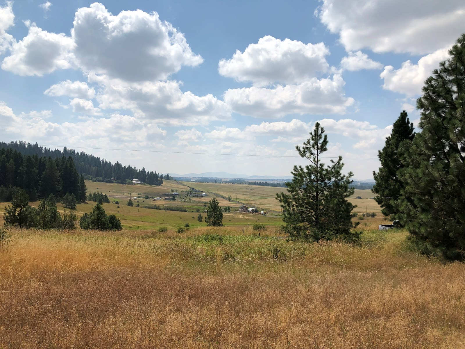 North Idaho Acreage for Sale Close to Coeur d'Alene