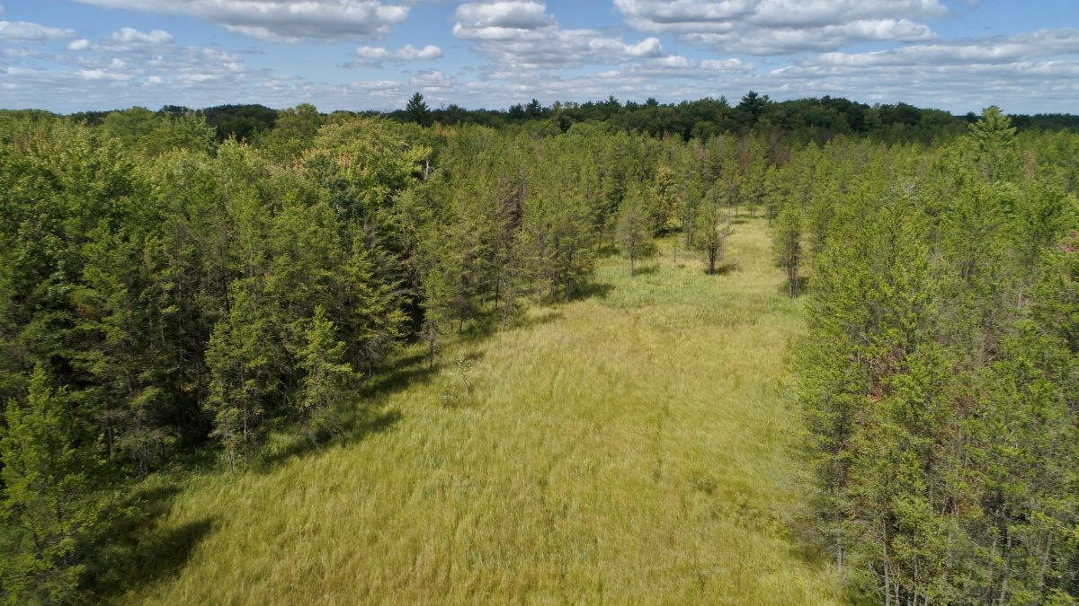 Hunting Haven For Sale in Adams County, WI