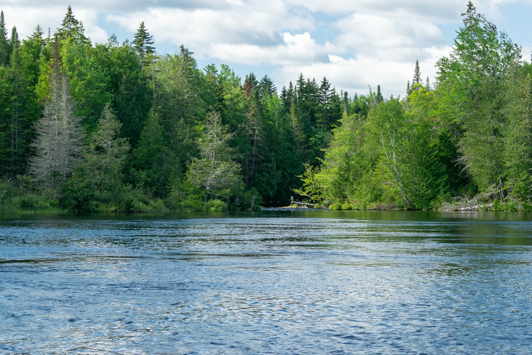 Waterfront Acreage on Kennebec River