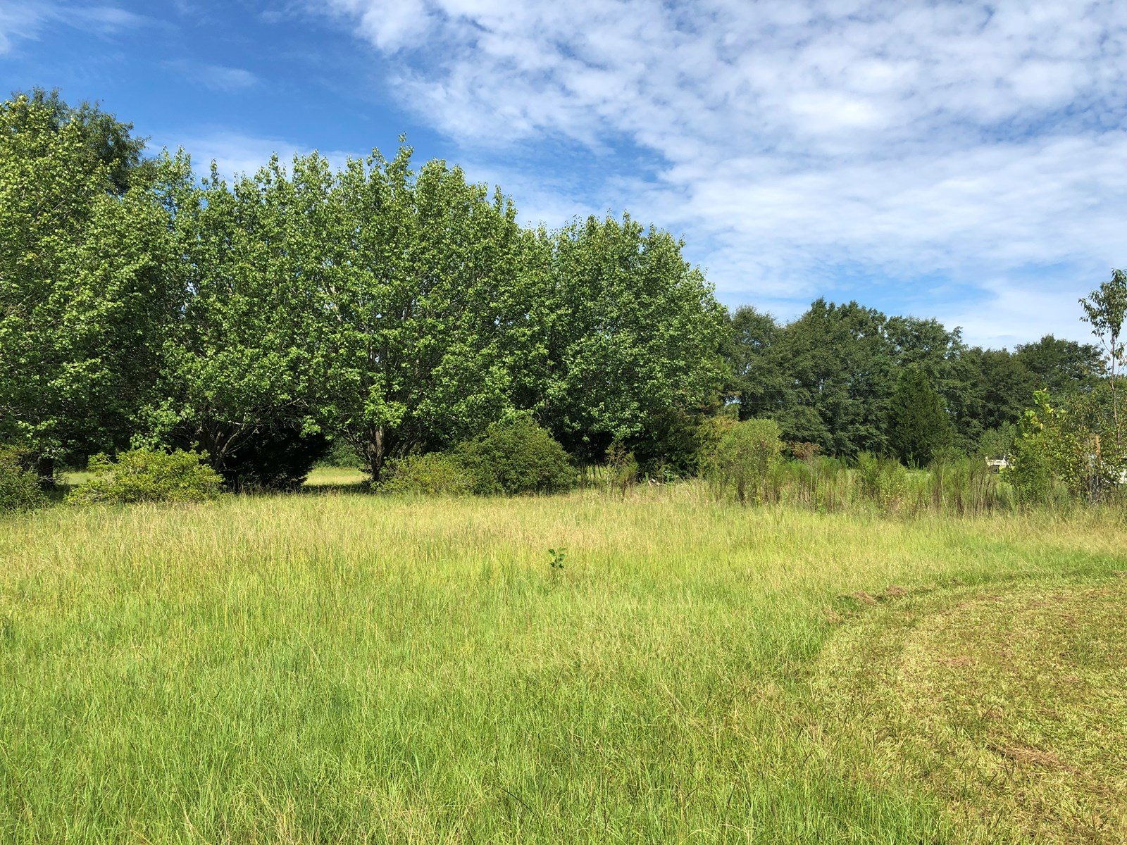 3.26 Acres of vacant cleared land for sale Hartford,AL