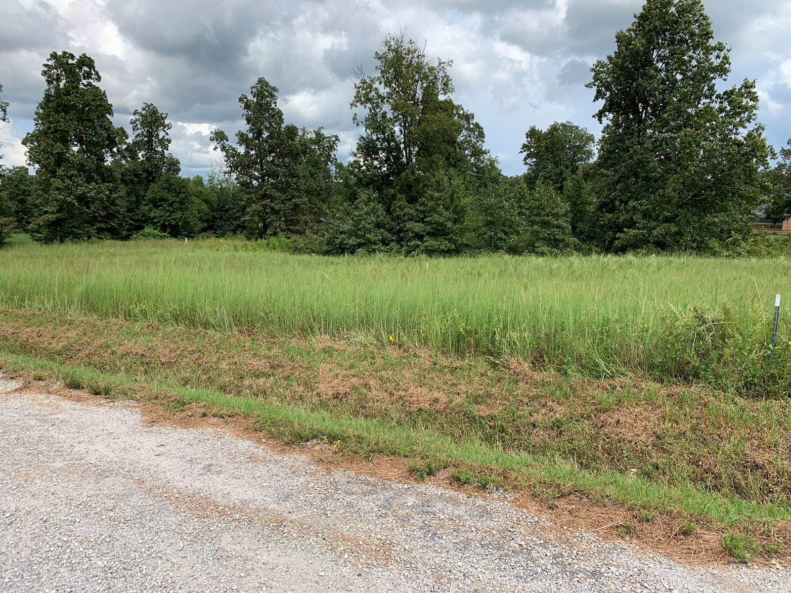 Land For Sale in TN