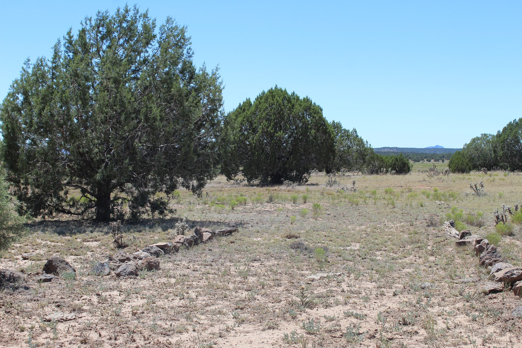 Level with Views - Large Acreage Sierra Verde Ranch
