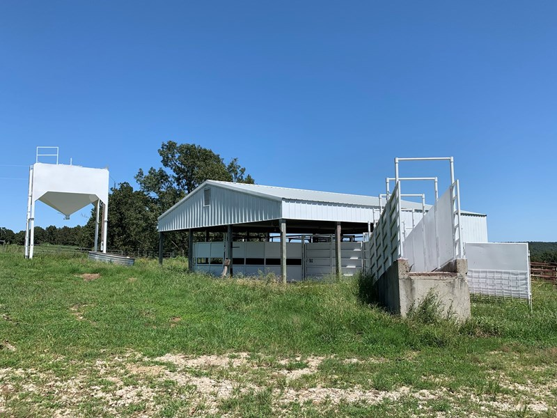 Cattle Facilities