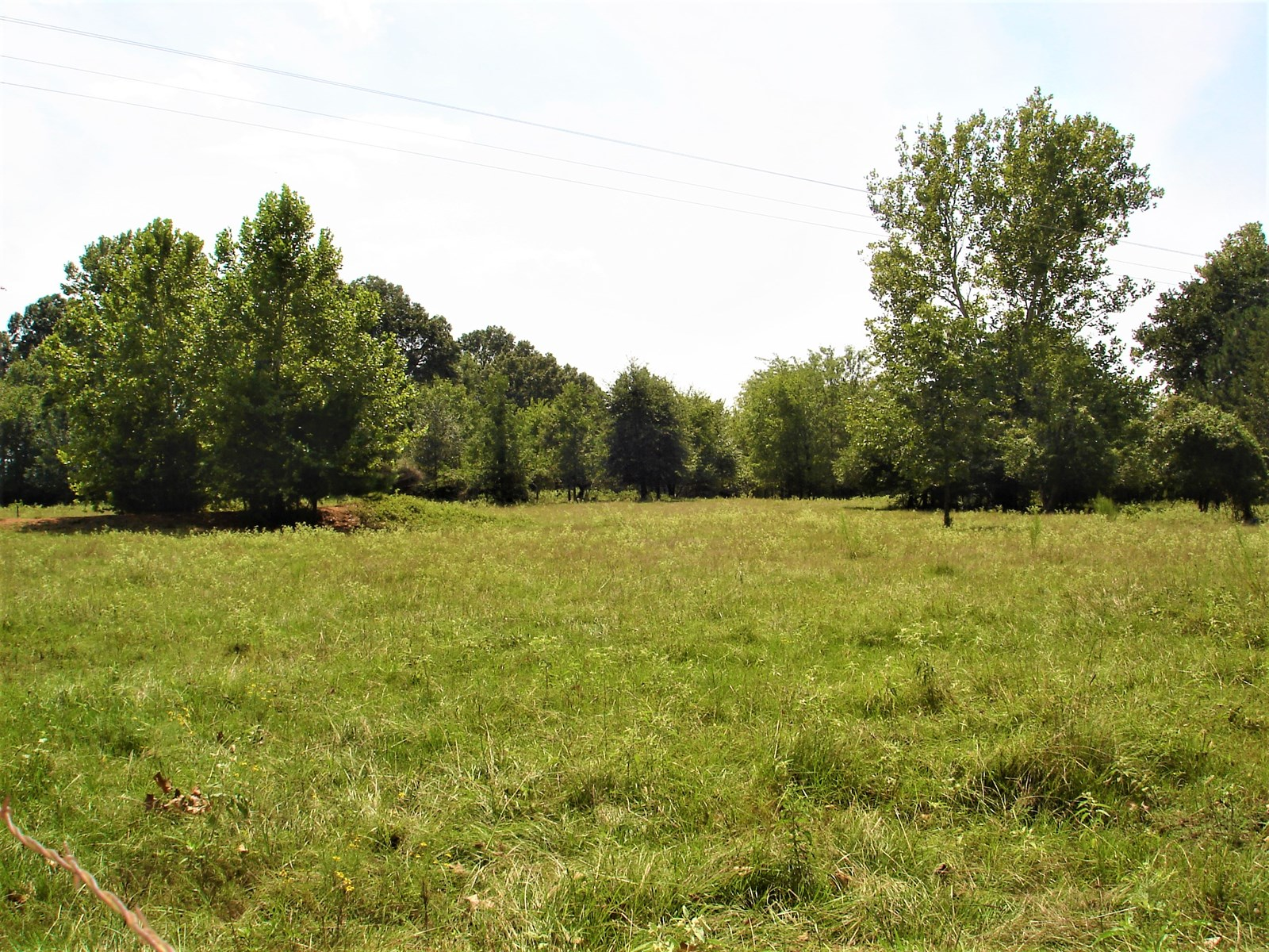 Recreational Land For Sale Red River County Clarksville TX