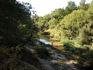 HUNTING PROPERTY IN RED RIVER COUNTY, TEXAS!