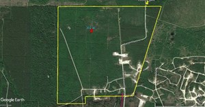 302 ACRES FOR SALE HUNTING RECREATION LAND 1 HOUR TO HOUSTON
