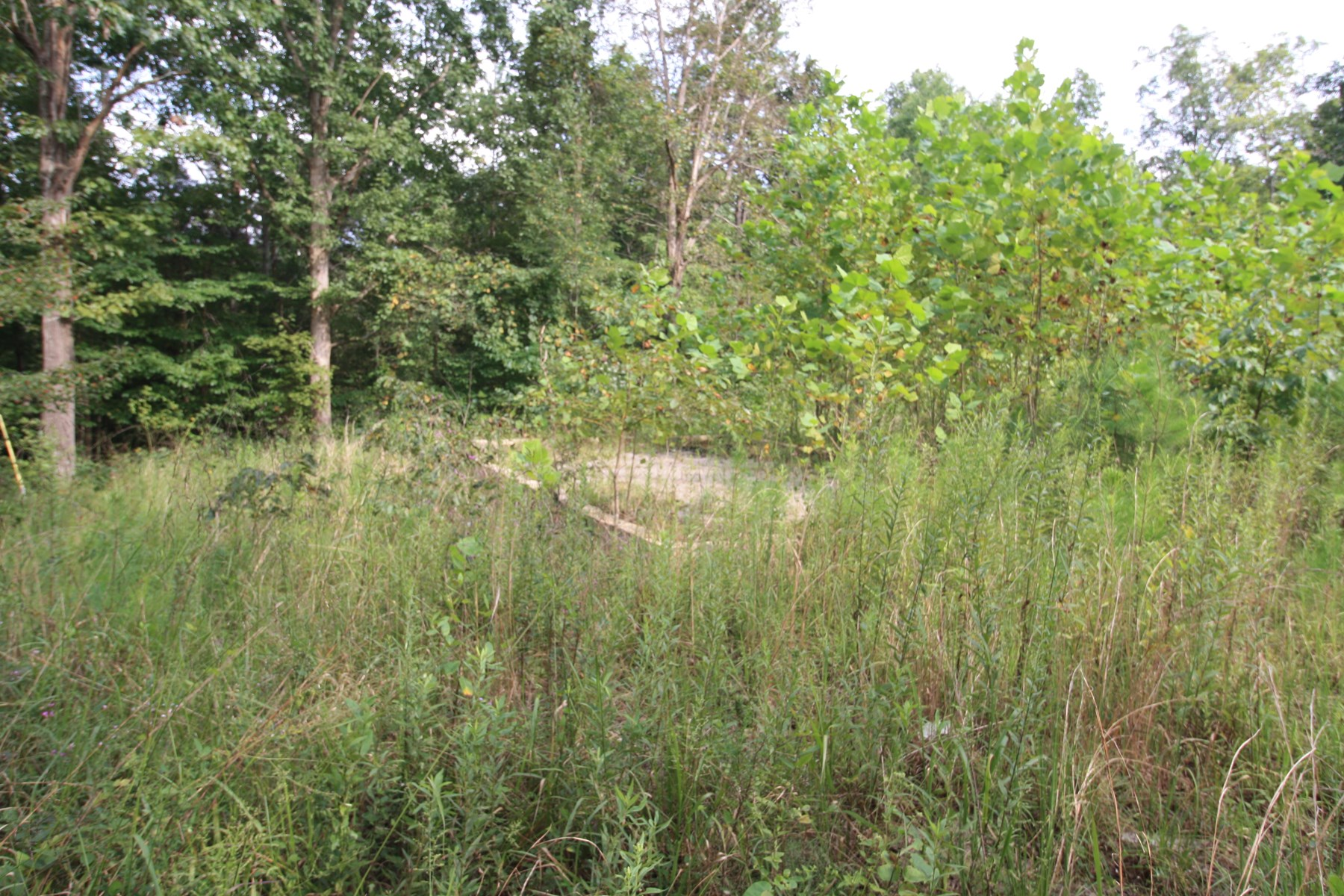 Hunting and Recreation Land For Sale 149 acres