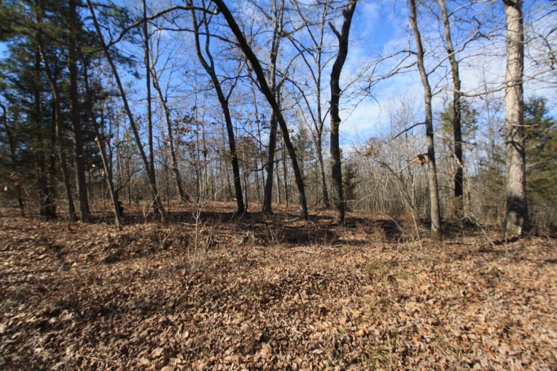 Vacant Land For Sale 16 acres