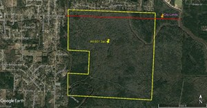 601 ACRES FORESTED DEVELOPMENT POTENTIAL LAND IN VIDOR TX