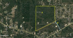 391 ACRES BEAUTIFUL DEVELOPMENT LAND FOR SALE IN VIDOR TEXAS