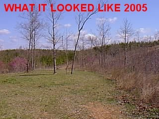 SOLD! Waynesboro Wayne County Hunting TN Land 42 Acre