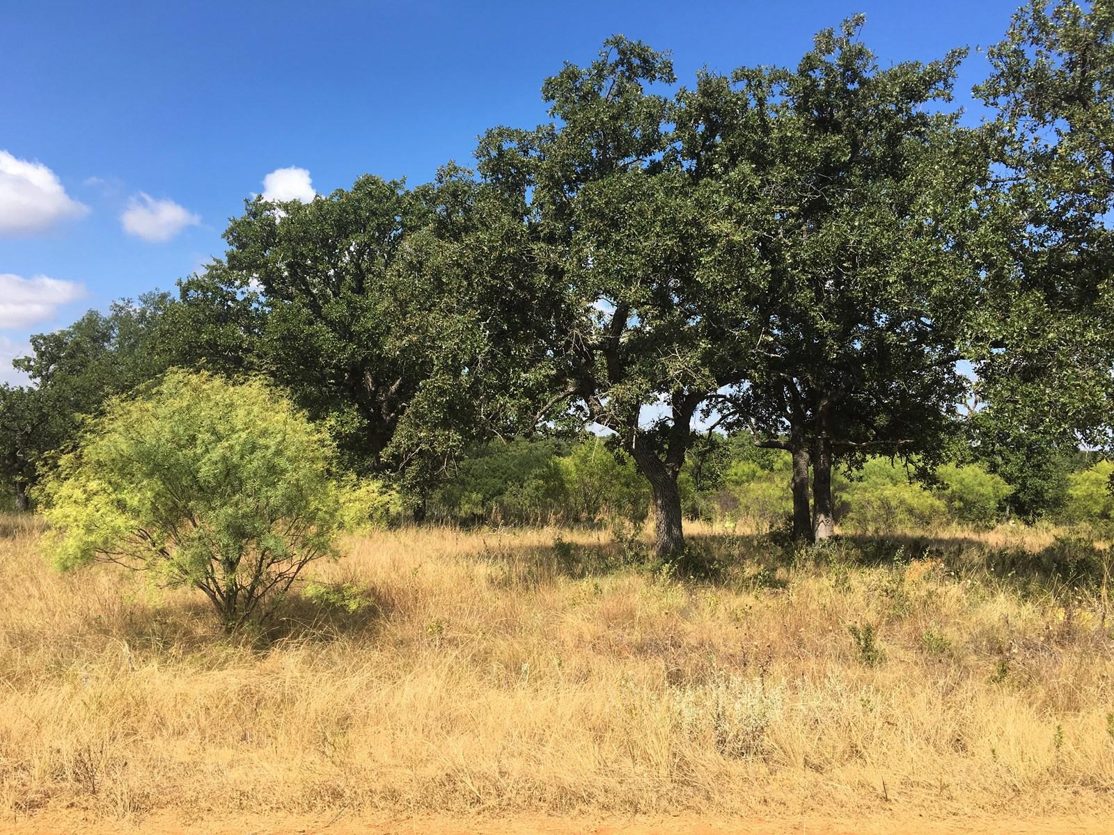 HOMESITE IN CROWN POINT NEAR LAKE BROWNWOOD TX