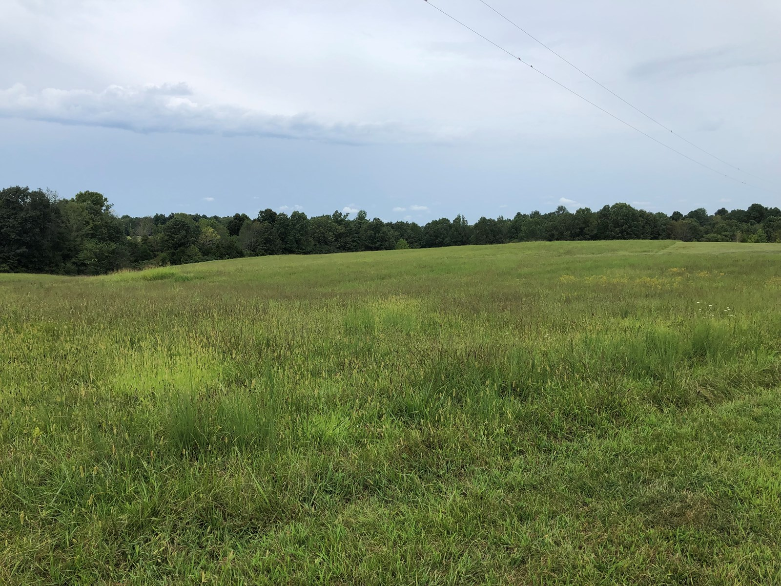 71 + Beautiful Rolling Acres in Warren & Edmonson County, KY in Tracts, Plus Select Hay Equipment