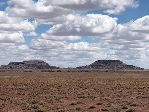 RANCH WITH MINERAL RIGHTS FOR SALE IN NAVAJO COUNTY, AZ