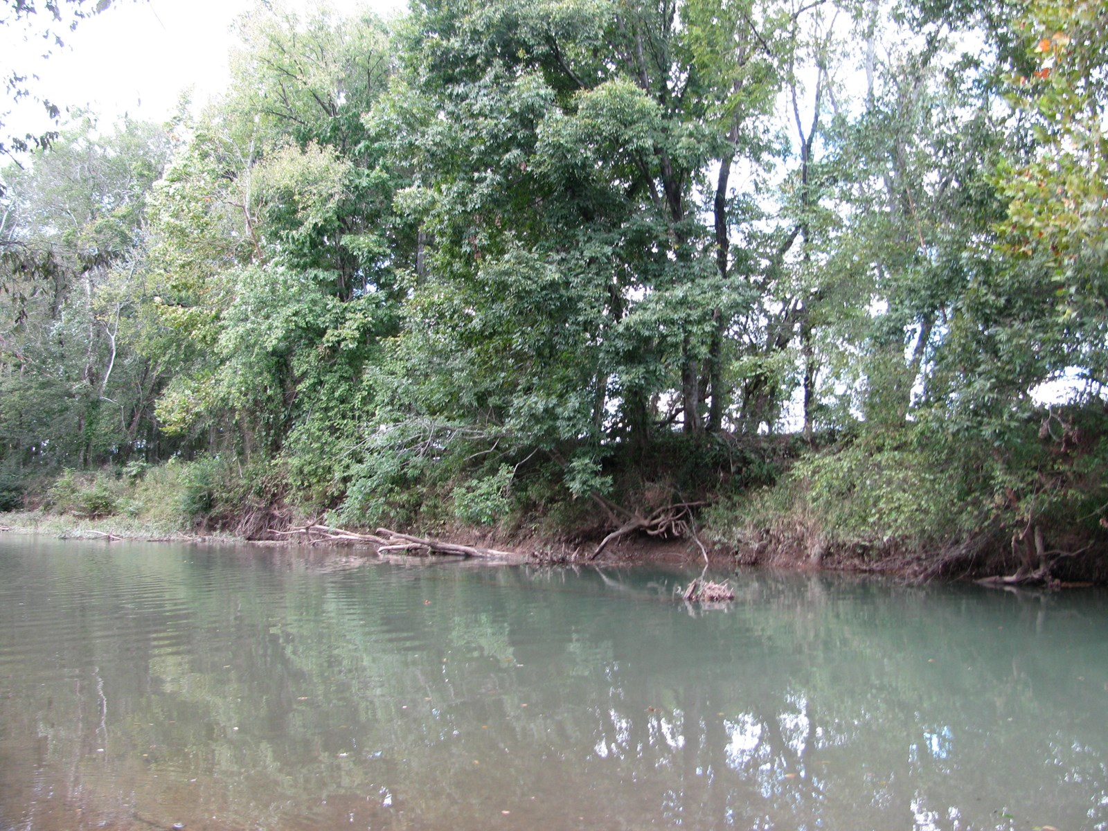 GREAT CAMPING LOT FOR SALE ON INDIAN CREEK IN TN