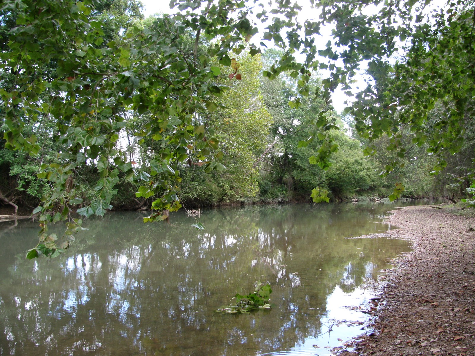 RV LOT FOR SALE ON INDIAN CREEK IN SAVANNAH, TN