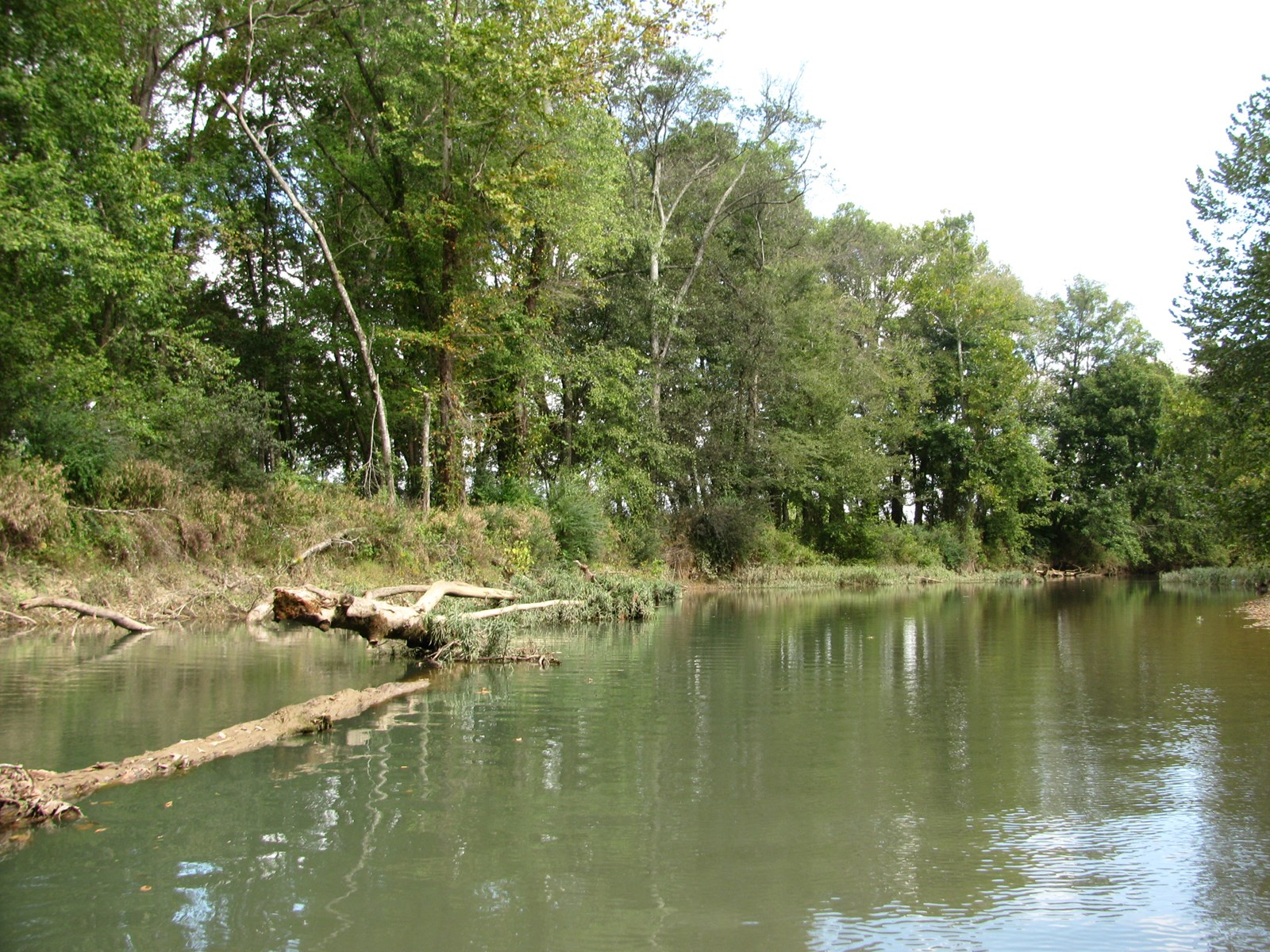 WATERFRONT RV LOT FOR SALE IN SAVANNAH, TN ON INDIAN CREEK