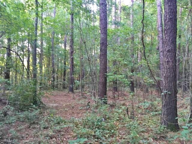 13.5 Acres Jones County Land for Sale on Hwy 15, Laurel, MS