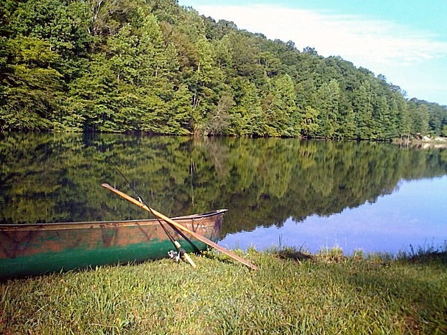 9.94 Tennessee Acres On Semi - Private Lake For Sale