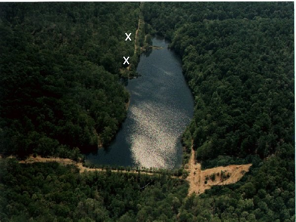 21 Acres For Sale On TN Spring Lake, Frontier Trace South TN