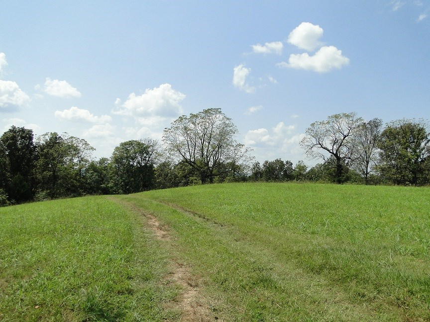 HUNTING ACREAGE WITH OUTSTANDING VIEW