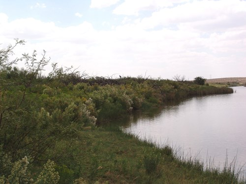 Riverfront Property For Sale near the Pecos River, Carlsbad
