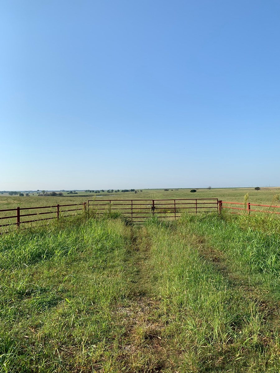 78 ACRES NATIVE GRASS  WITH POND