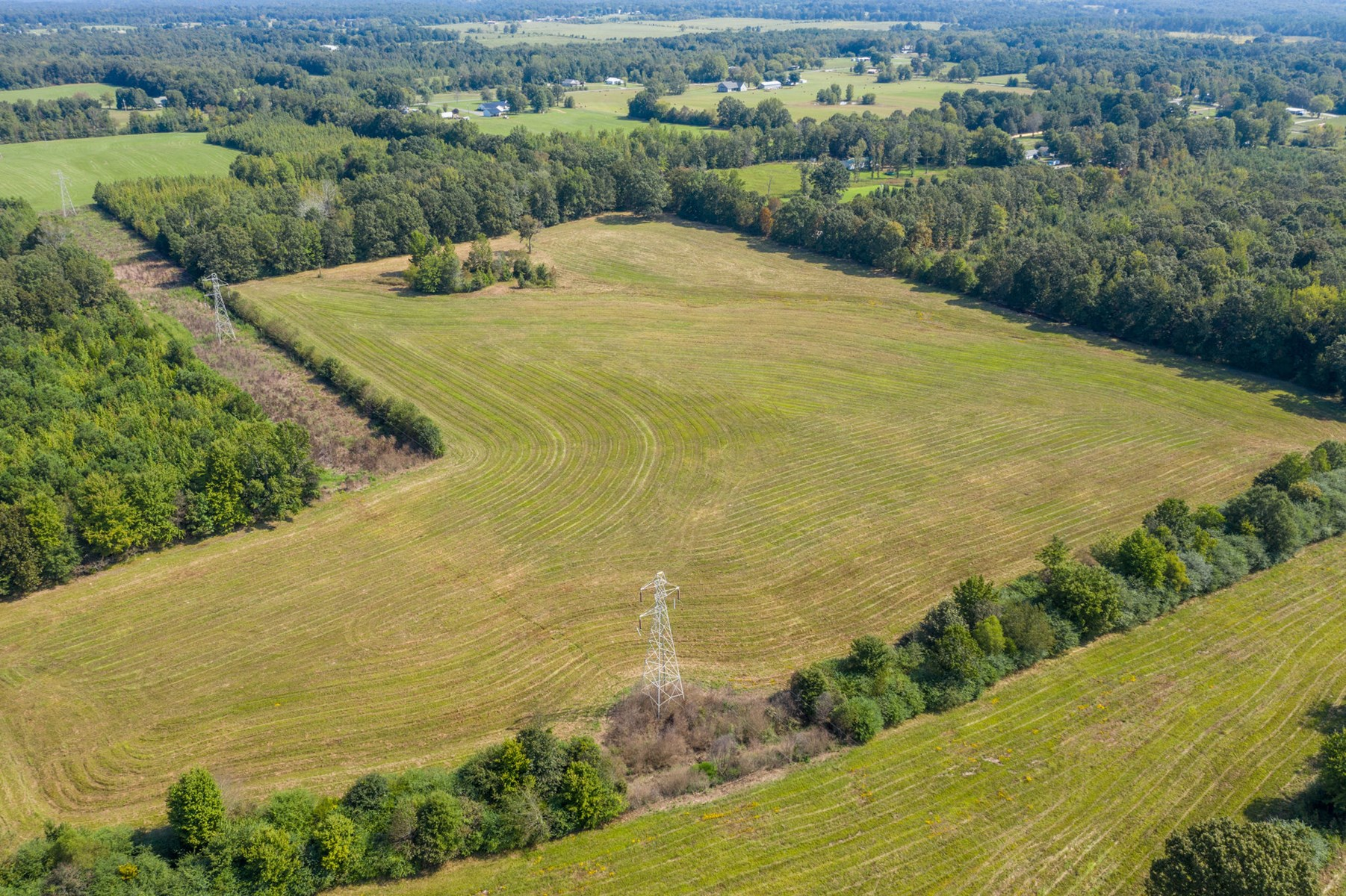 50 Acres in Hohenwald TN for Auction