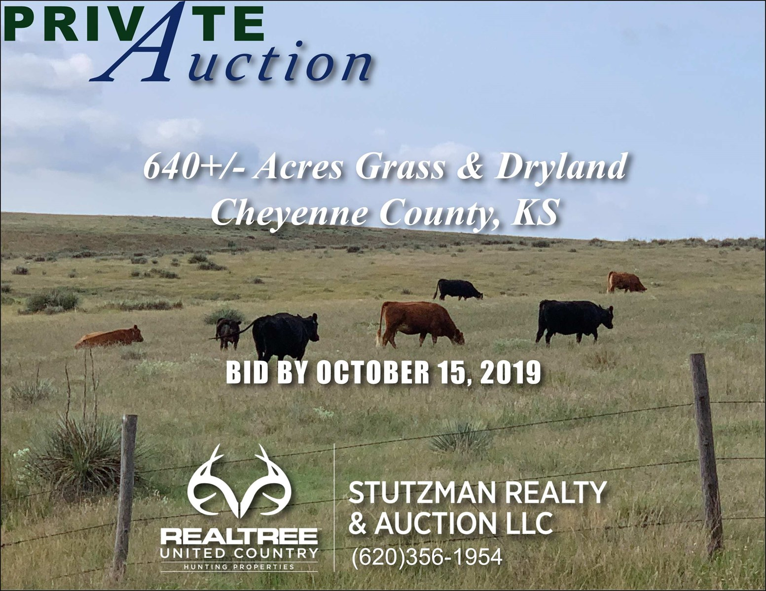 CHEYENNE COUNTY KS 640+/-AC HUNT/RANCH/FARM PRIVATE AUCTION