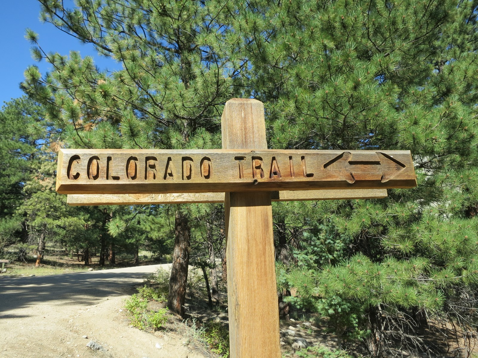 Colorado Trail within 1/4 mile
