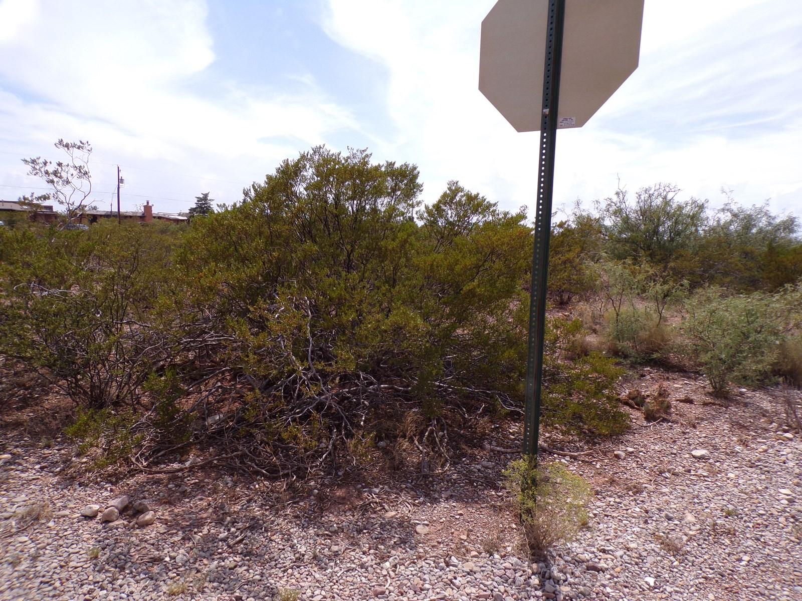 0.484 Acres in La Luz, NM