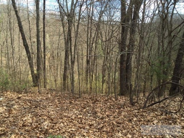 Wooded Lot in Gated Community