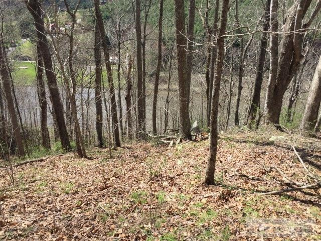 Wooded Lot with New River View