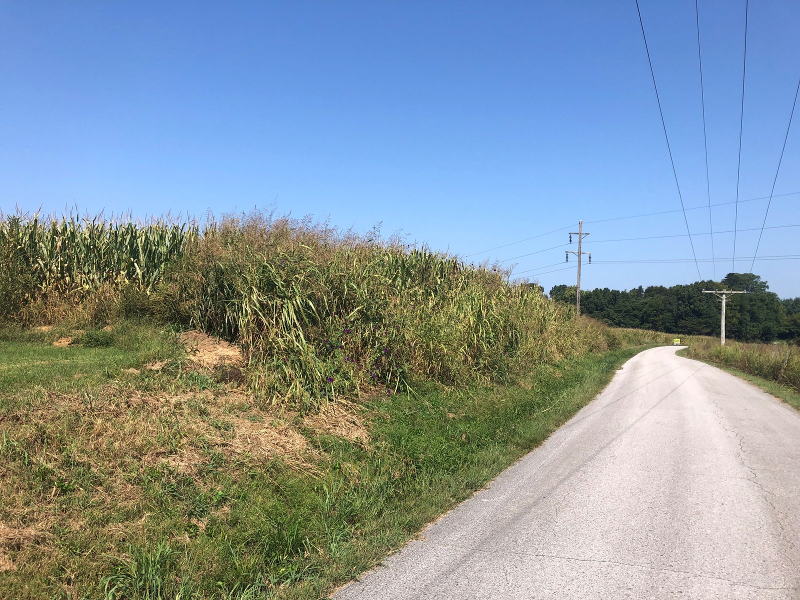 18.98 of Warren Co. & Smiths Grove Ky. Land offered in 3 Tracts @ Auction
