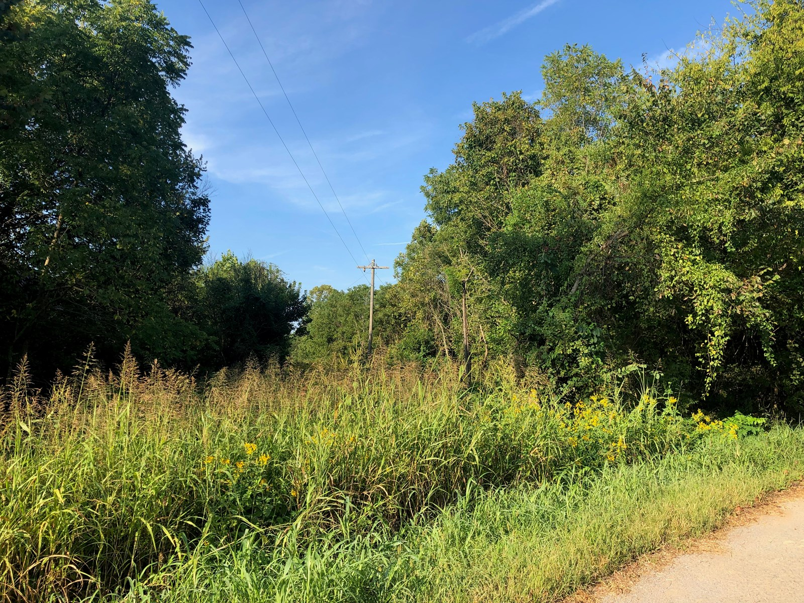 3.35 Acres of Unrestricted Land in East TN For Sale