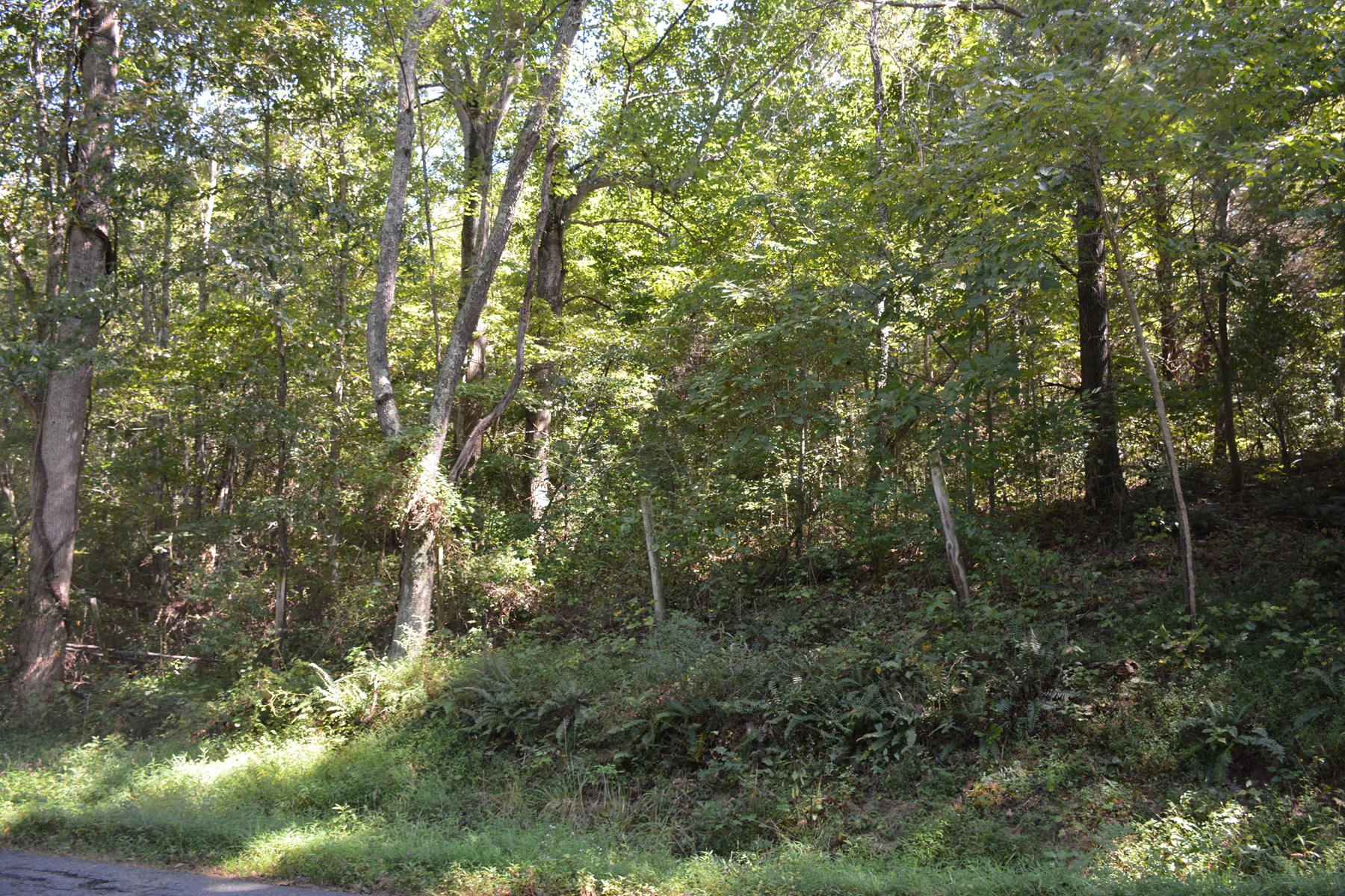 For Sale; 3 Acre Wooded Building Lot in Culpeper VA