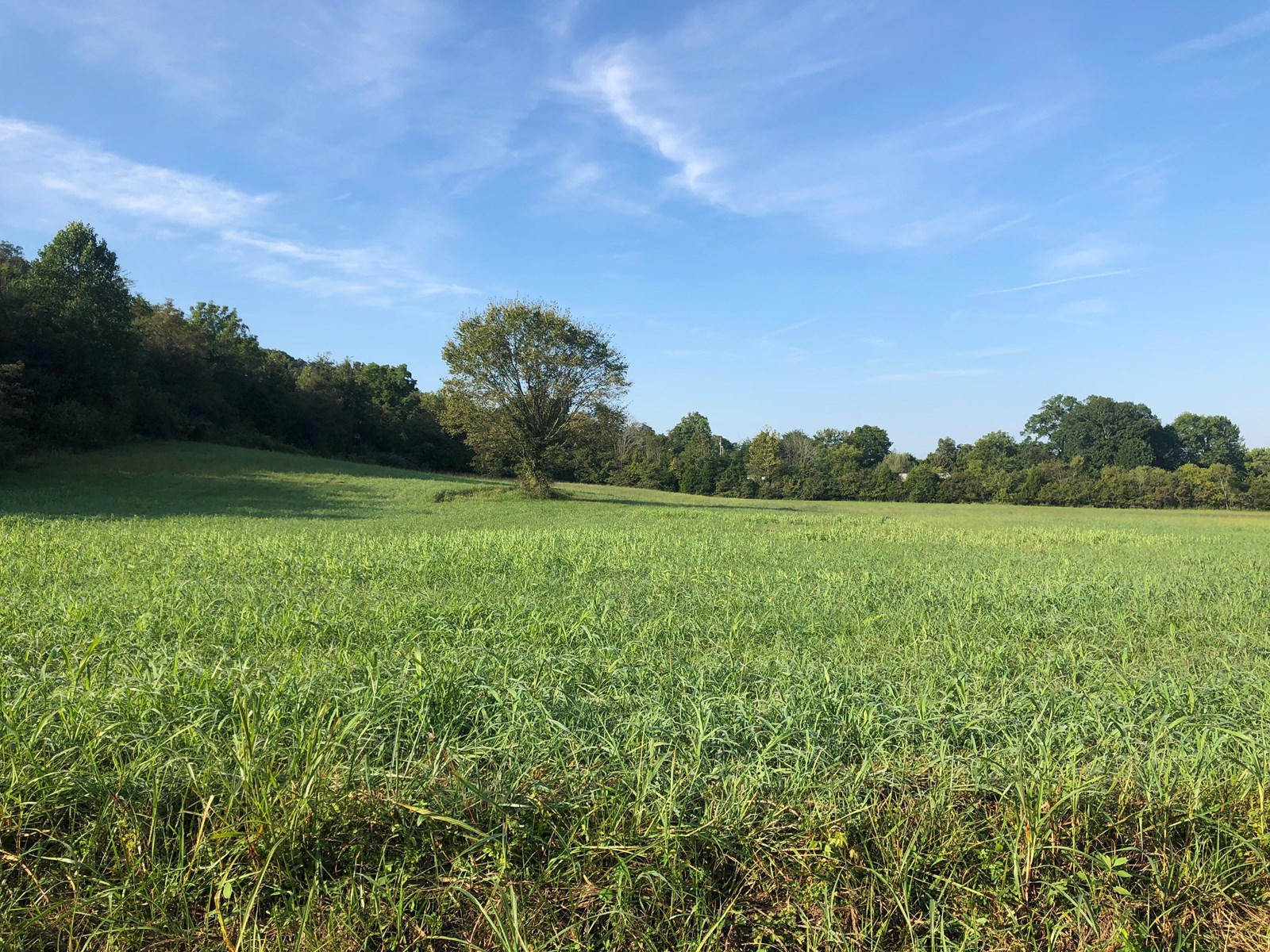 .57 Acre Unrestricted Lot For Sale in Hawkins Co., TN