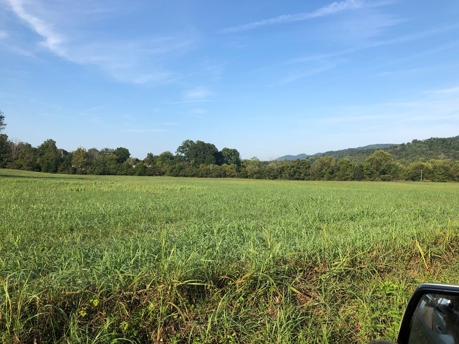.55 Acres Unrestricted Land in Whitesburg, TN