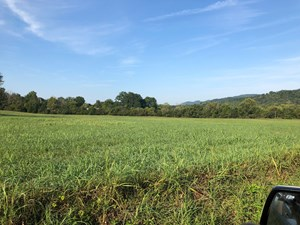 .55 ACRES UNRESTRICTED LAND IN HAWKINS CO., TN