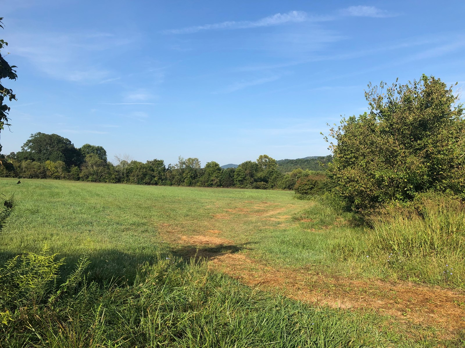 3.66 Acres Unrestricted Land in Whitesburg, TN For Sale