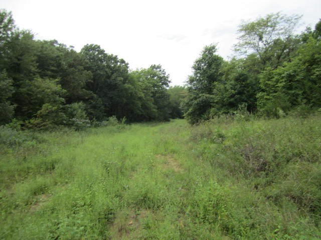 Recreational Deer Hunting Property with Tillable Northern MO