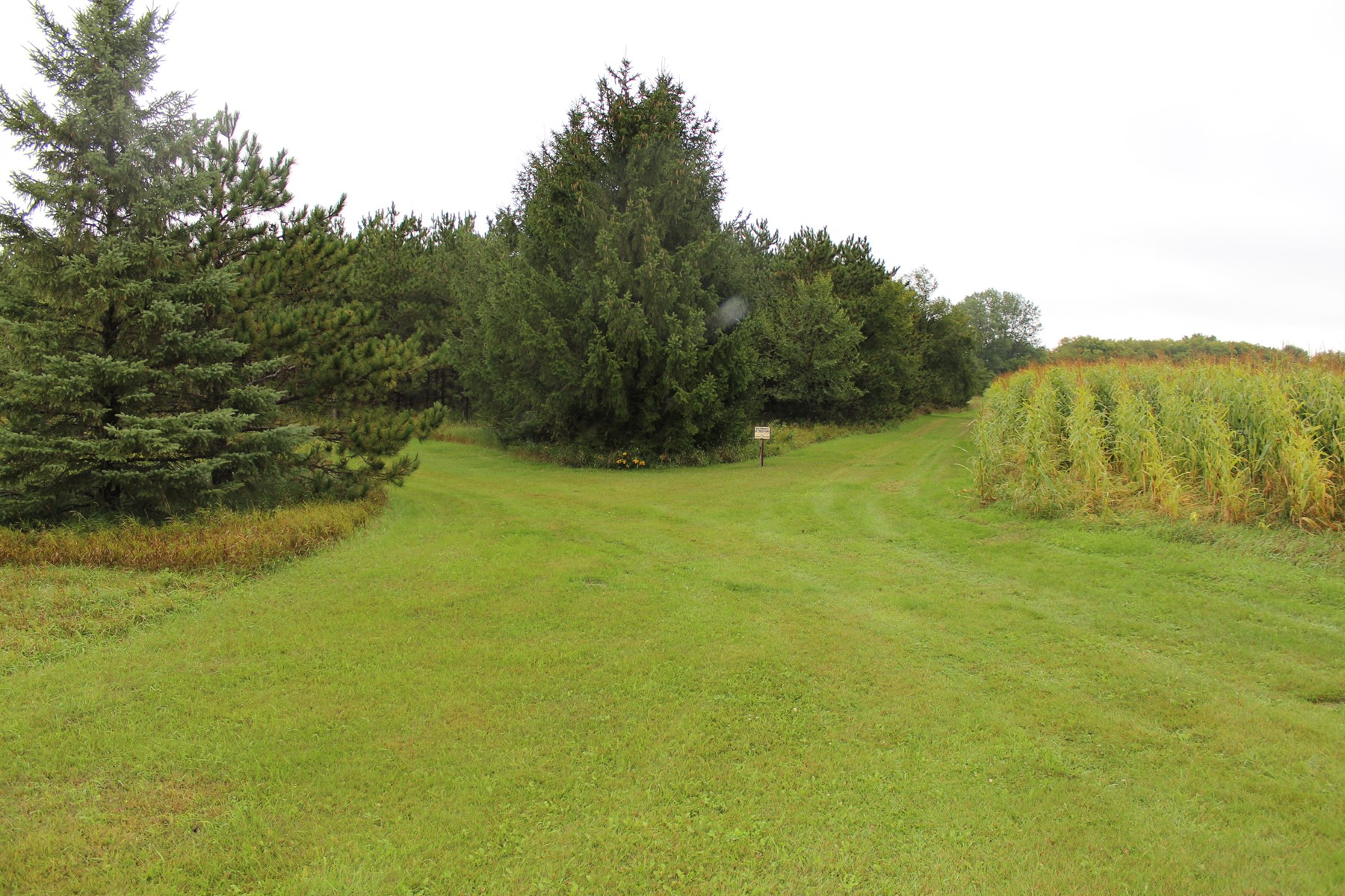 Stearns County Hunting Land For Sale