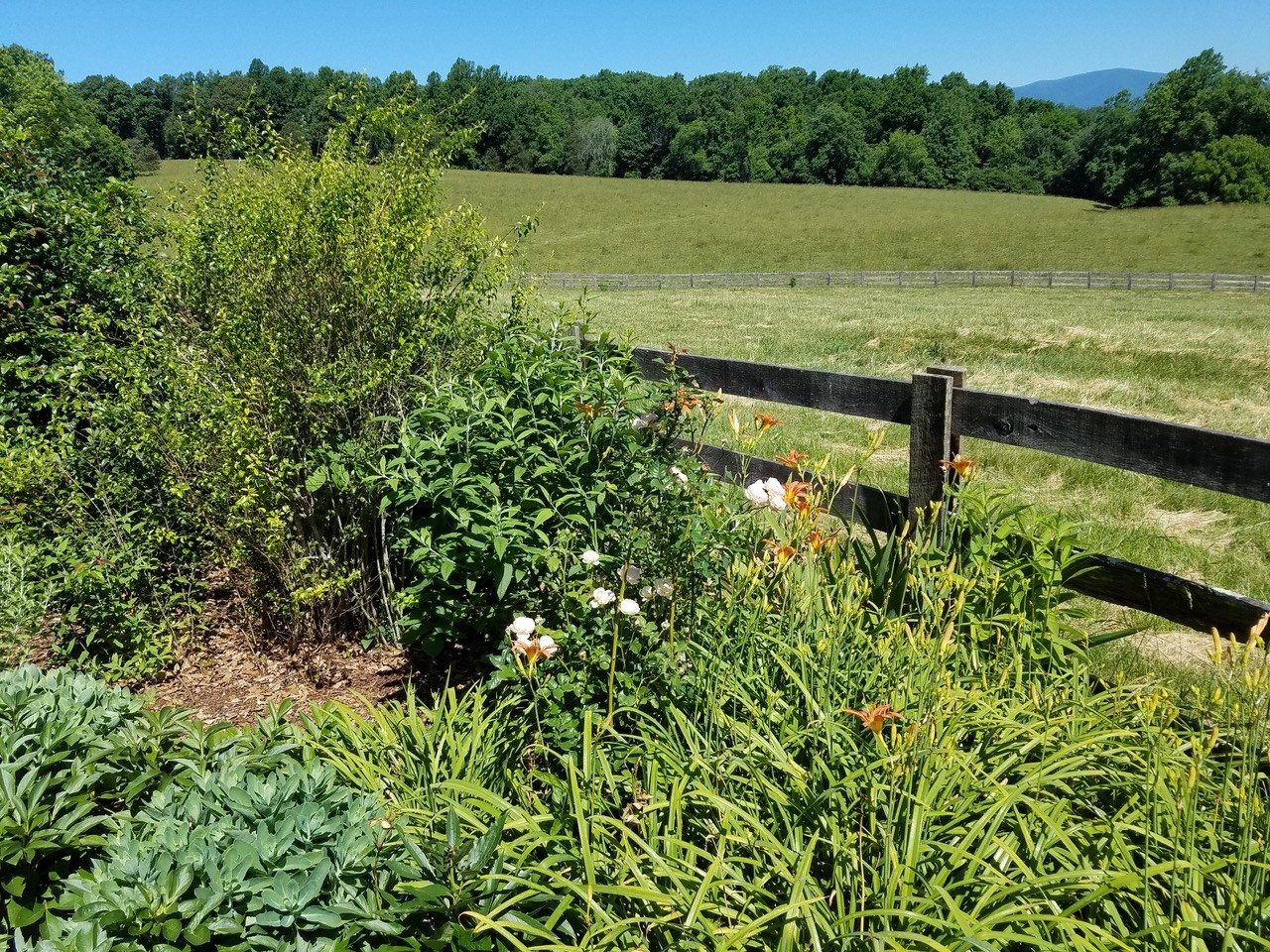 173+ ACRE FARM WITH RIVER FRONTAGE: Amherst, VA