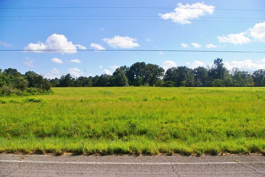 15.27 Acres Land for Sale Kentwood, Tangipahoa Parish, LA