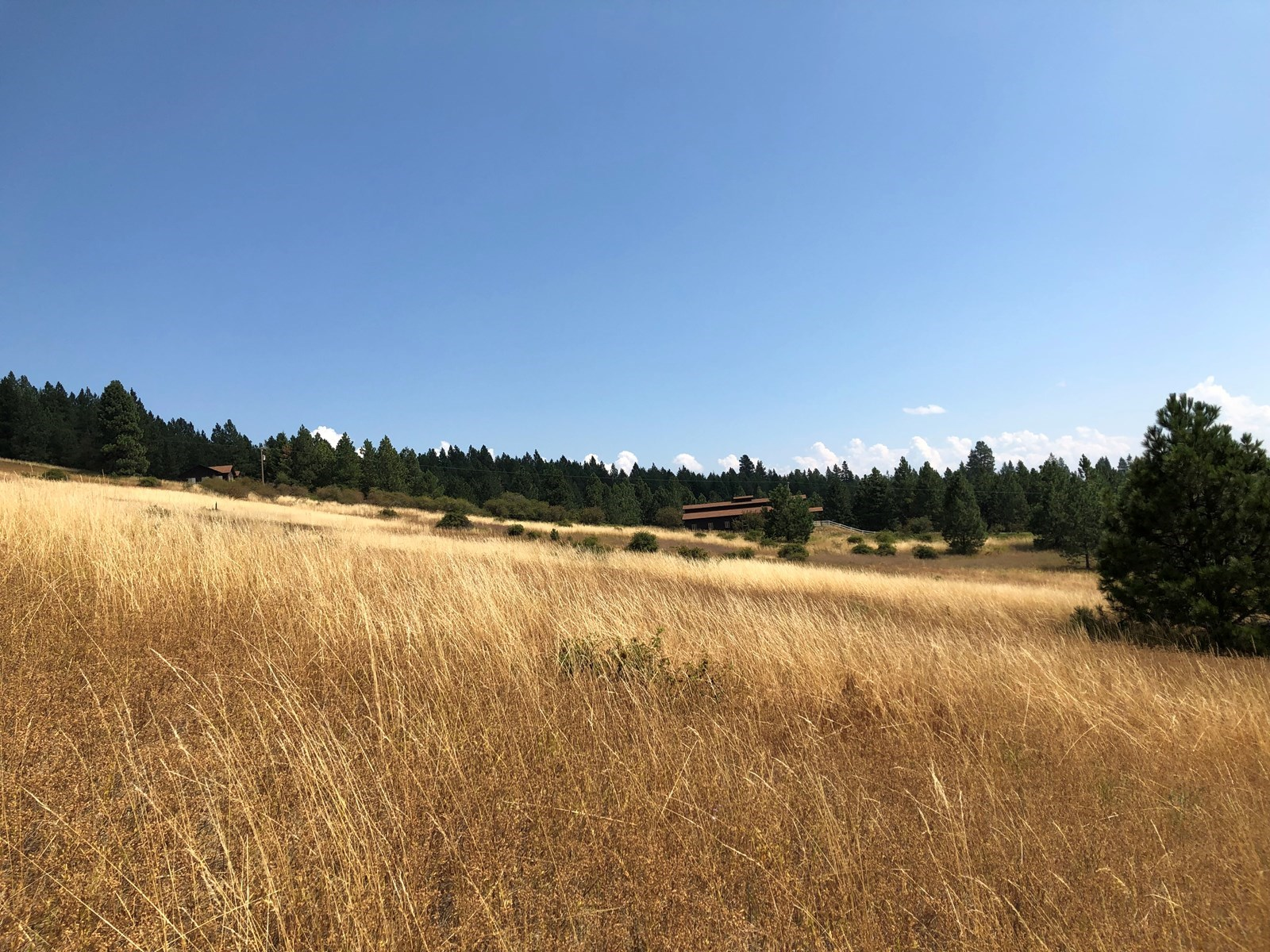 North Idaho Country Living Land With Acreage For Sale
